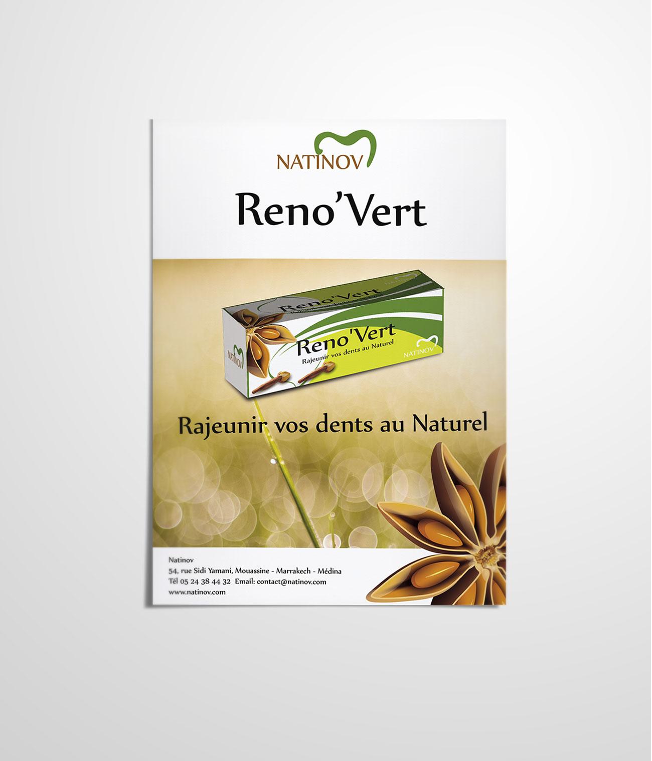 Nationov Reno'vert flyer