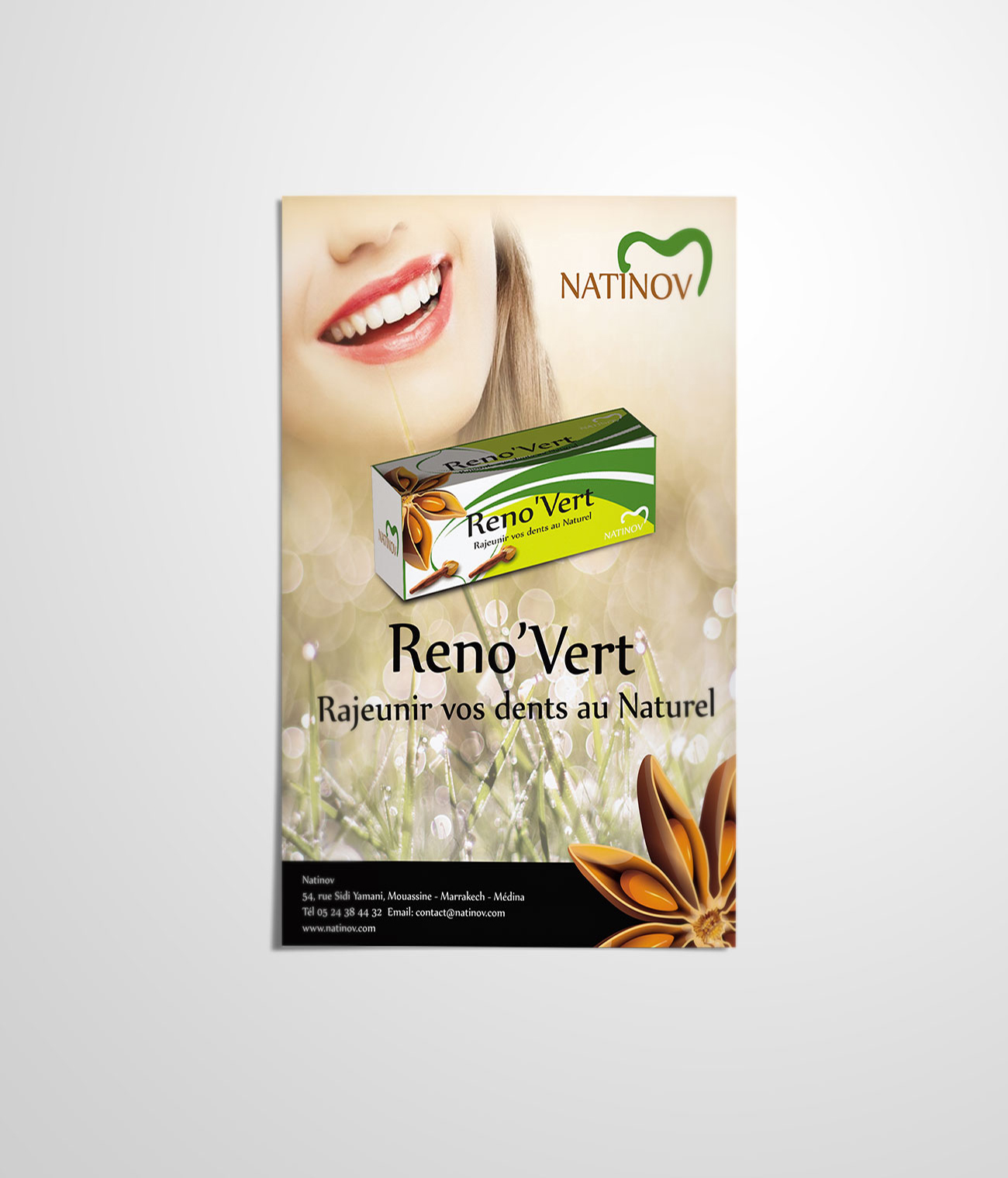 Reno'Vert Flyer 2
